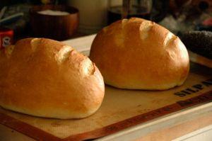 Daily Bread Recipe